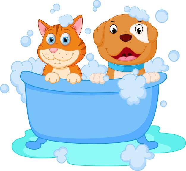 Leuk honden- en kattenbad