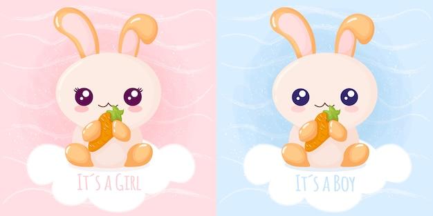 Leuk konijn het is een meisje het is een jongen