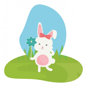 Leuk konijnwijfje op het gebied