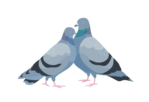 Leuk koppel duiven. vrouwelijke en mannelijke verliefde vogels staan samen. paar liefje dieren geïsoleerd op een witte achtergrond. twee romantische duiven. vectorillustratie in platte cartoonstijl.