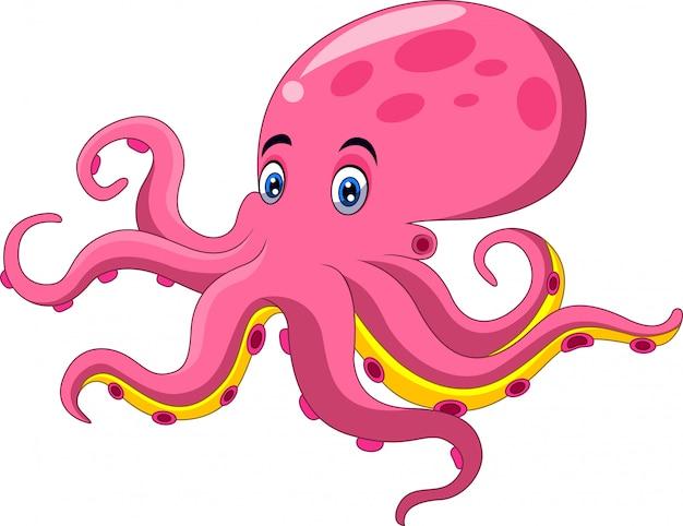 Leuk octopusbeeldverhaal op witte achtergrond