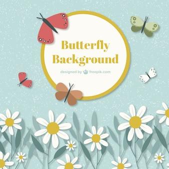 Leuke achtergrond met vlinders en madeliefjes