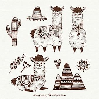 Leuke alpaca-collectie