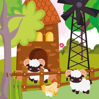 Leuke boerderij kip schapen