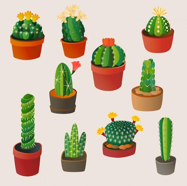 Leuke cartoon cactus huis plant aard illustratie