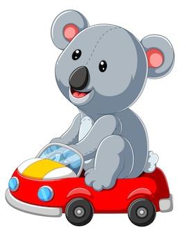 Leuke cartoon koala op een rode auto