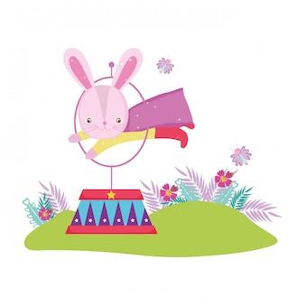 Leuke circus konijn springende brand ring