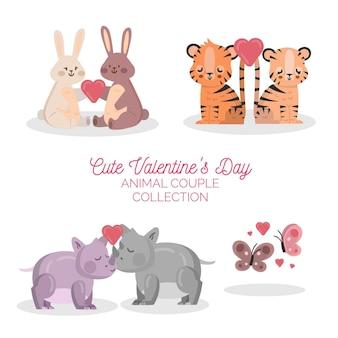 Leuke collectie dierenparen voor valentijnsdag