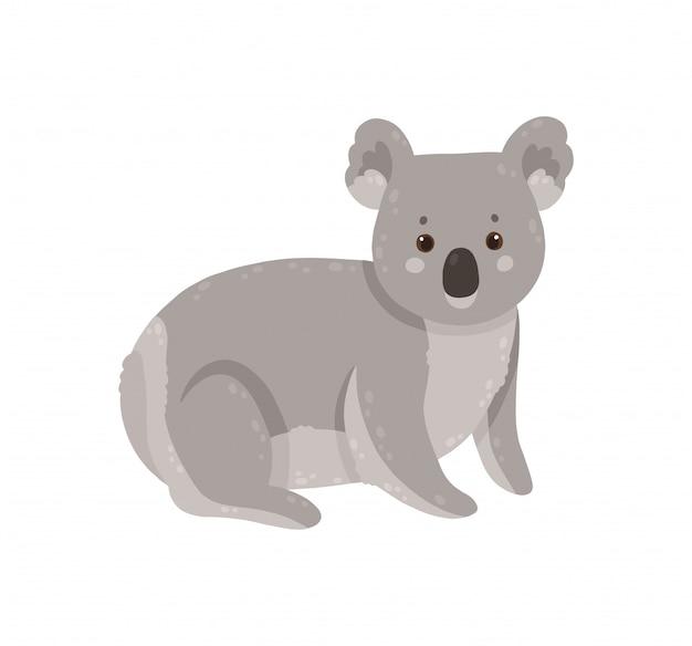 Leuke die koala op witte achtergrond wordt geïsoleerd.