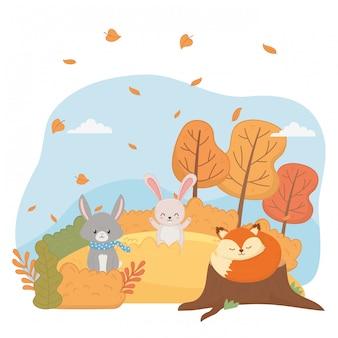 Leuke dieren gebladerte hallo herfst