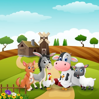 Leuke dierenboerderij in de heuvels