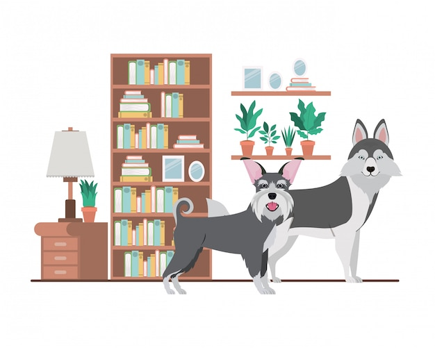 Leuke en schattige honden in de woonkamer
