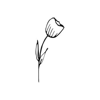 Leuke enkele hand getekende bloemenelementen. doodle vectorillustratie voor bruiloft ontwerp, logo en wenskaart.