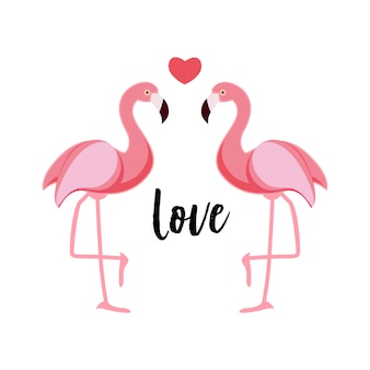 Leuke flamingo liefde