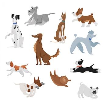 Leuke grappige binnenlandse het huisdierenillustratie van beeldverhaalhonden. hond puppy huisdier karakters. harige menselijke vrienden thuis blije dieren set.