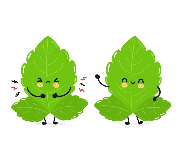 Leuke grappige droevige en gelukkige stevia bladeren karakter. vector hand getekend eenvoudige platte cartoon kawaii karakter illustratie pictogram. geïsoleerd op een witte achtergrond. stevia suiker bladeren stripfiguur concept