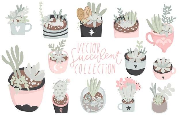 Leuke handgetekende set van verschillende cactusvetplanten mooie en zachte pastelkleuren