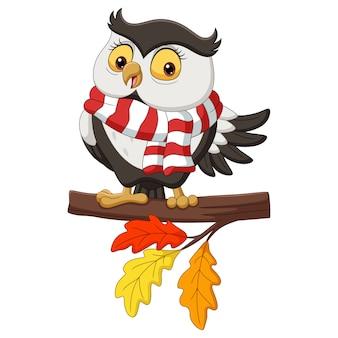Leuke herfst uil cartoon dragen van een sjaal op boomtakken