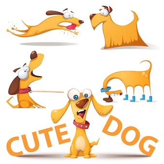 Leuke honden set