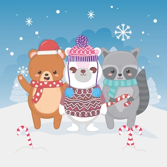 Leuke ijsbeerwasbeer en teddy het suikergoedriet vrolijke kerstmis van het sneeuwsuikergoed