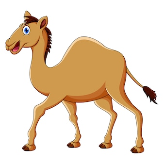 Leuke kameelcartoon