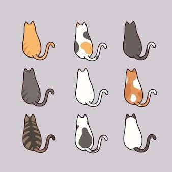 Leuke kat die achter meningsreeks zitten