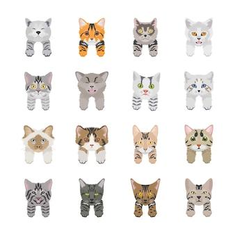 Leuke kat gezichten pictogrammen