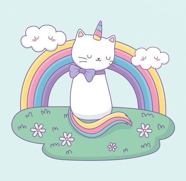 Leuke kat met regenboogstaart in het karakter van kampkawaii