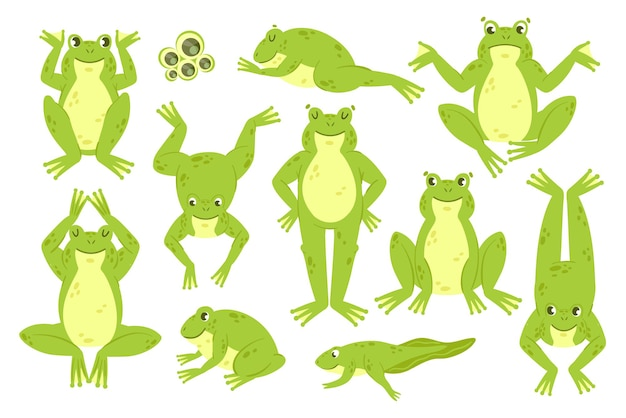 Leuke kikker set grappige vrolijke groene kikker karakters kwaken sprong hop sprong slaap collectie