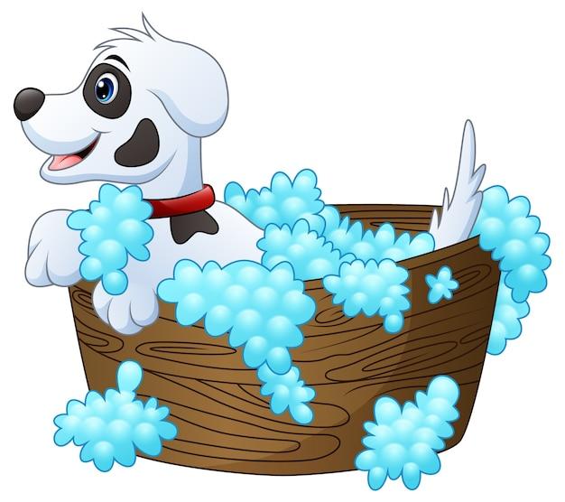 Leuke kleine hond die een bad op een witte achtergrond neemt