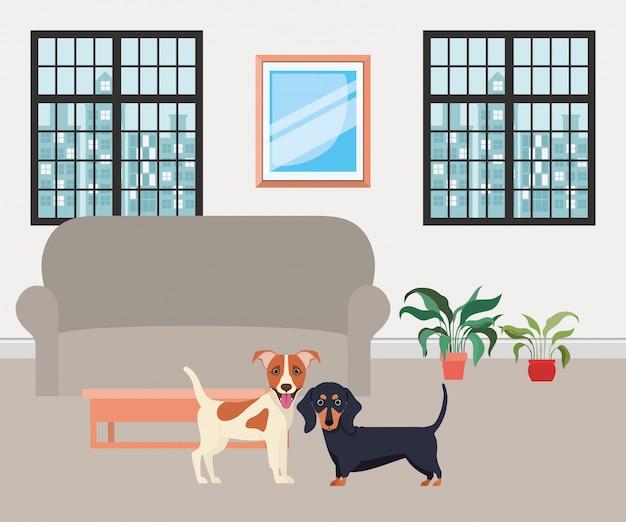 Leuke kleine honden in de woonkamer