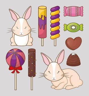 Leuke konijnen en snoepjes