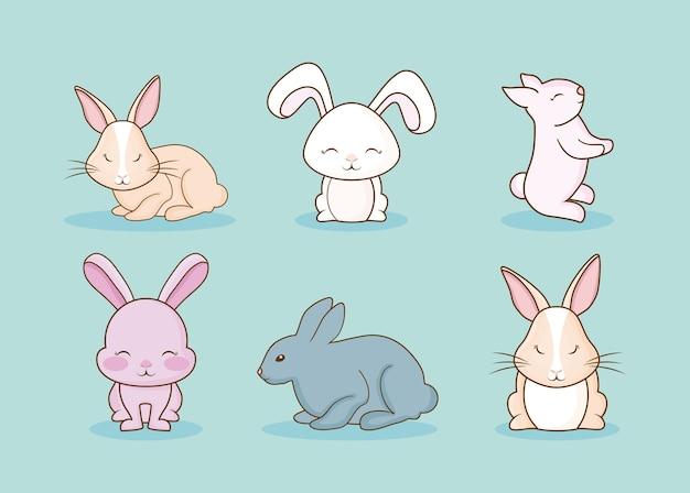 Leuke konijnen