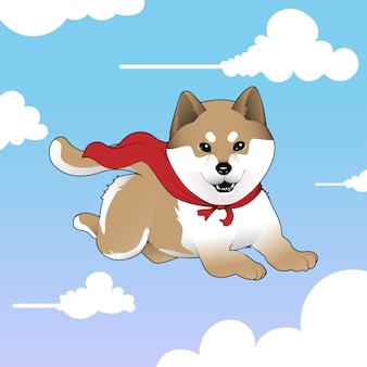 Leuke super shiba inu flying