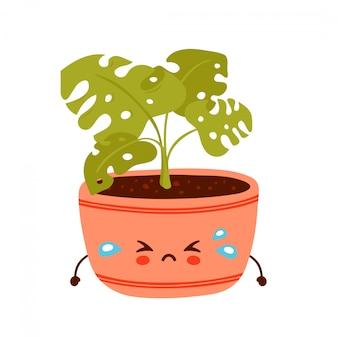 Leuke trieste grappige monsteraplant in pot. vector cartoon characterdesign illustratie. geïsoleerd