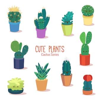 Leuke tropische cactusplanten