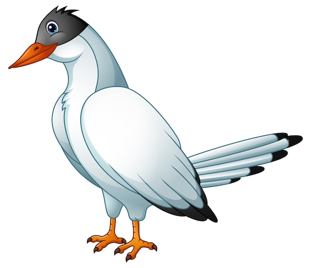 Leuke vogelstern cartoon