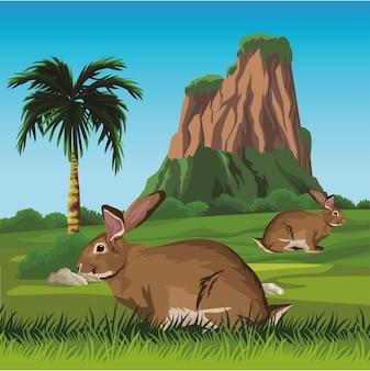 Leuke wilde konijnen in het landschap