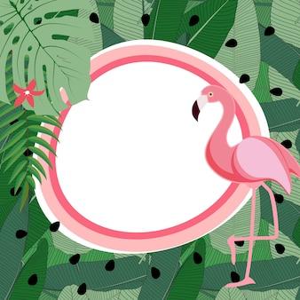 Leuke zomer abstracte frame achtergrond met roze flamingo vectorillustratie eps10
