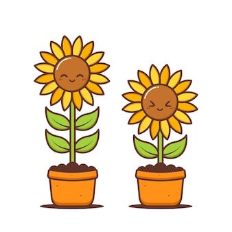 Leuke zonnebloemen groeien in potten