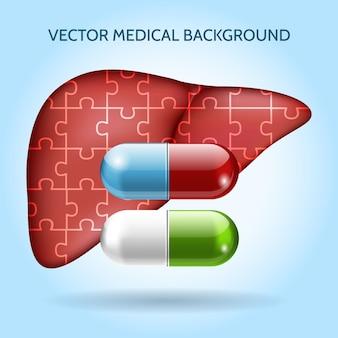 Leverpuzzel en pillen. verzorgingsorgaan, gezond en capsule of tablet