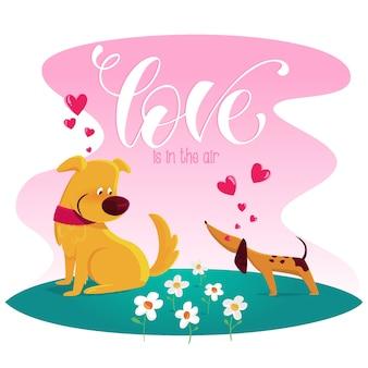 Liefde hangt in de lucht met honden