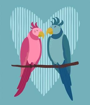 Liefdevol paar papegaaien