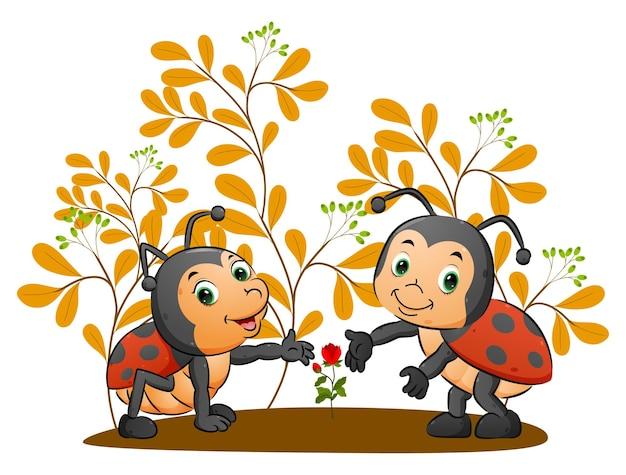 Lieveheersbeestjes die de groei van de roos in de tuin van illustratie tonen