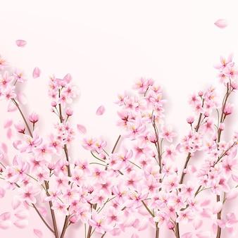 Liggende takken van japanse sakura met bloemblaadjes. bloeiende kers.