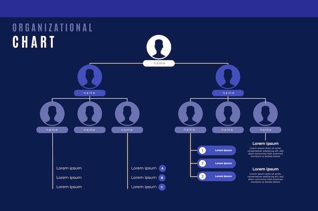 Lineair plat organigram infographic met foto
