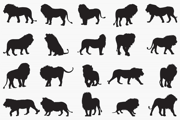 Lion silhouetten