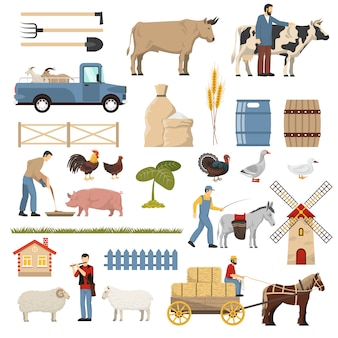 Livestock farm elements collection