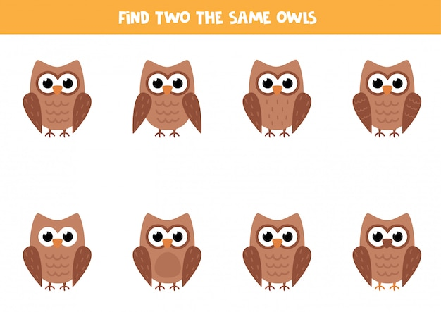 Logische puzzel voor kinderen. zoek twee identieke uilen.