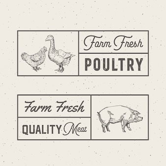 Logo van farm fresh poultry and meat